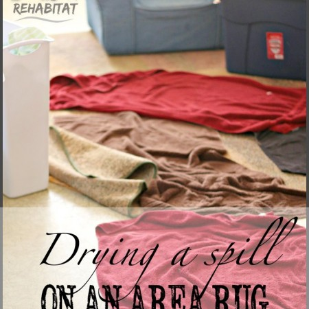 How to dry an area rug after a spill or even a flood