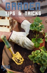 Garden tips and tricks to make your harvest successful. Useful Gardening hacks